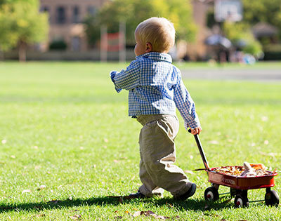 Toddler playing on grass