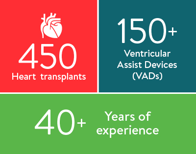heart transplant infographic