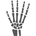hand and wrist icon